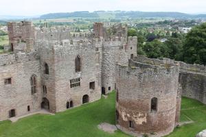 castle (133)