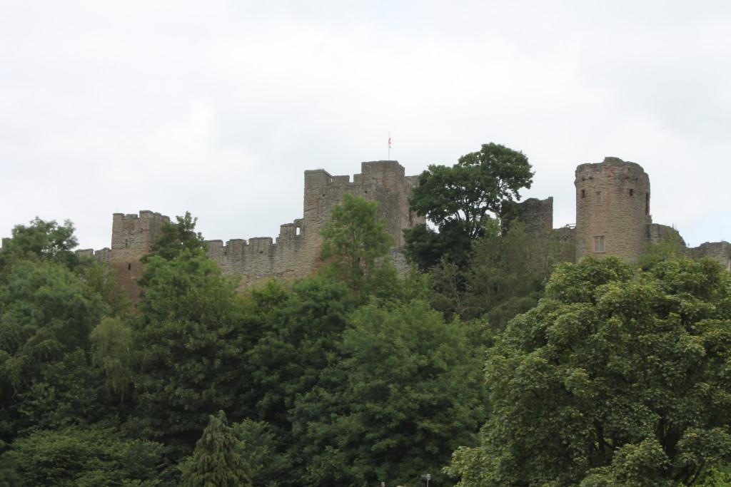 castlefromwalk (16)